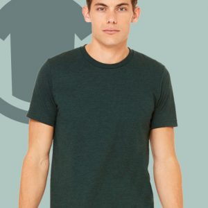 "alt=""canvas-mens-tee-tshirt"""